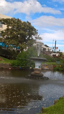Dawlish Town